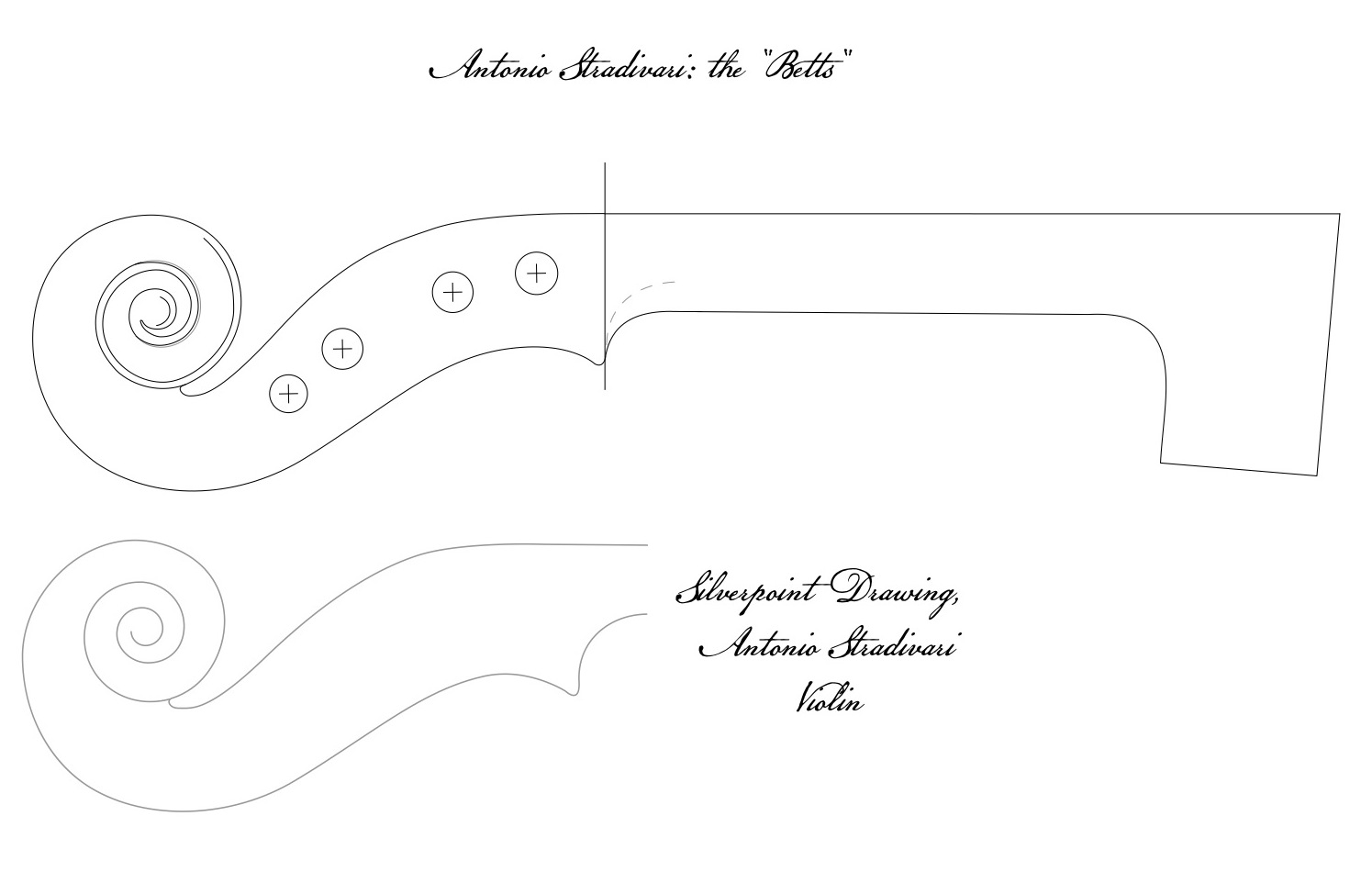 measurements/dimensions, violin scroll - Discussion Forums - Fiddle ...